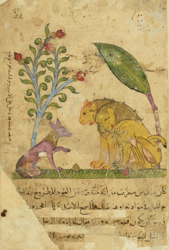 Page from an Arabic manuscript with a drawing of a fox talking to lions under stylized trees.